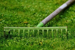Schneidwerkzeuge für die Gartenpflege