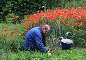 Gartengeräte zählen zur Grundausstattung