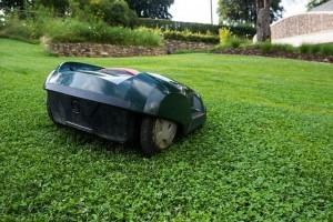 Rasen Mähroboter