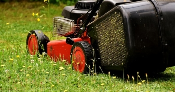 Wie oft Rasen mähen?