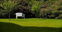 6 Tipps zur Gestaltung Ihres Gartens